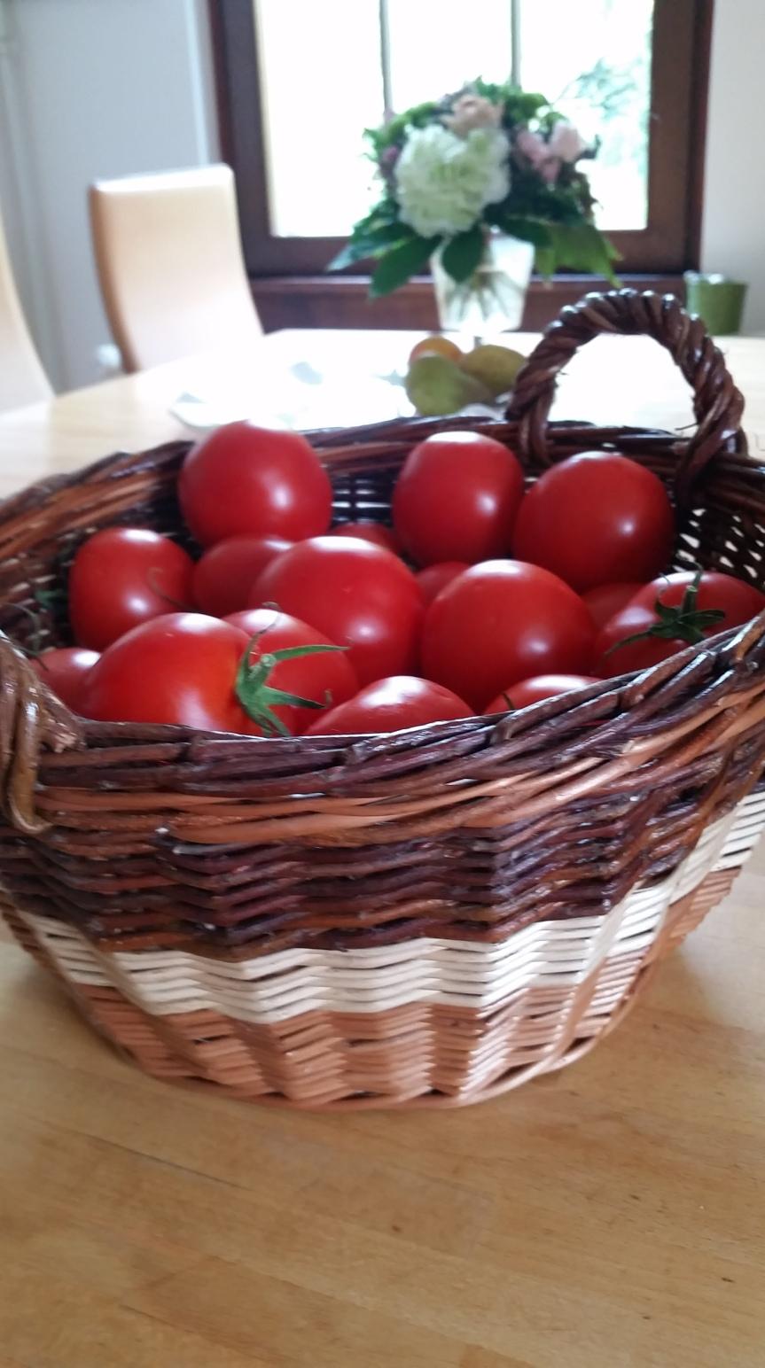 Es ist Tomatenzeit